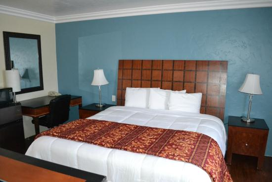 Rex Motel: Room