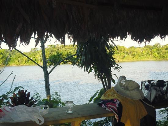 Tambopata River: VISTA DESDE LOS BUNGALOWS