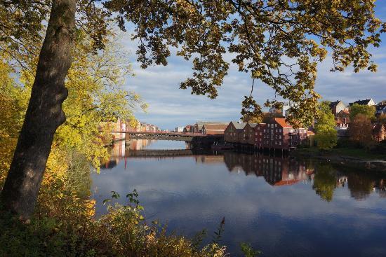 show user reviews town bridge trondheim municipality trondelag central norway