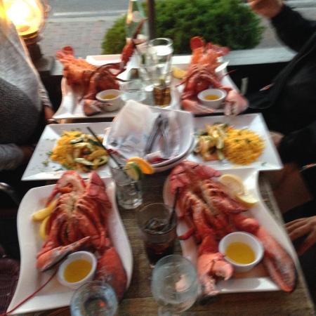 Freeport, NY: 3 pound Lobsters!!!