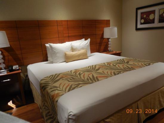 Ramada Staten Island: Ramada hotel room