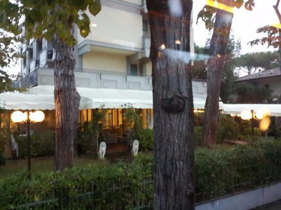 Airone Hotel: Eingang