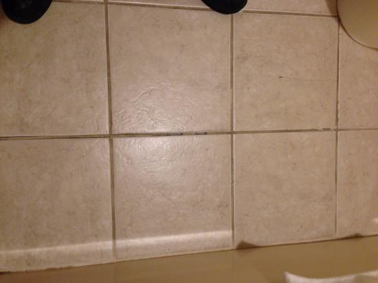 Centerville, IA: More chipping in the bathroom floor