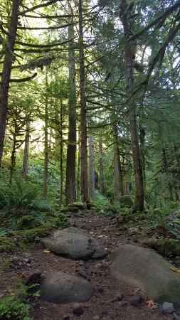 Hood River, OR: Up to Triple Falls