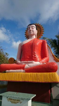 Unawatuna, Sri Lanka: Traumhafte Strände und Natur...