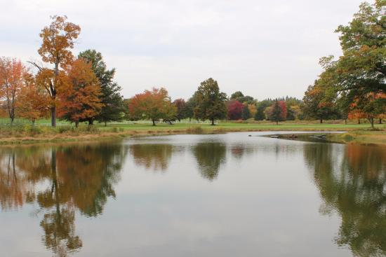 Agawam, MA: Just a nice fall photo of a beautiful pond at Crestview