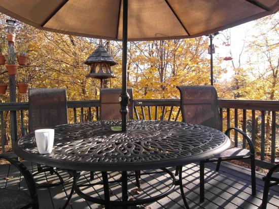Westport, Канада: The patio - if it was only 10 °C warmer...