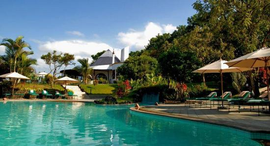 Royal Palm Hotel Galapagos: Swimming Pool