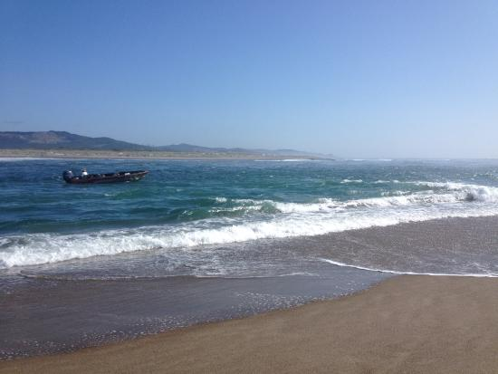 Salmonberry Inn & Beach House: Taft beach and Siletz Bay