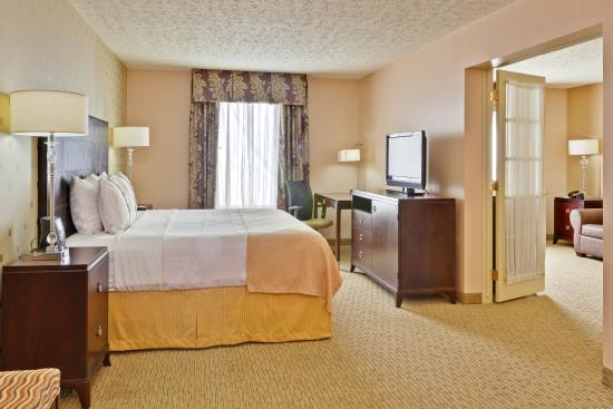 Holiday Inn Bloomington: King Bed Guest Room
