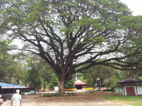 Wat Tham Khiri Wong