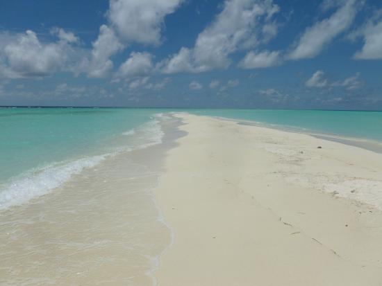 sandbank bild von kuramathi island resort kuramathi. Black Bedroom Furniture Sets. Home Design Ideas