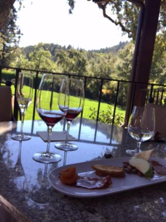 Michel-Schlumberger Wines: The cheese & charcuterie board that I loved so much, nearly gone!