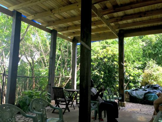 Wiltshire, Jamaica: new covered area cool and nice