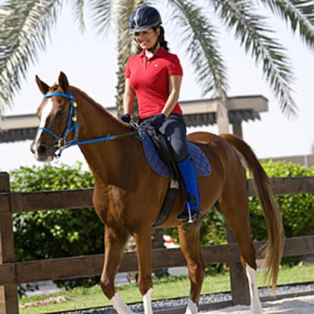JA Palm Tree Court: Horse Riding