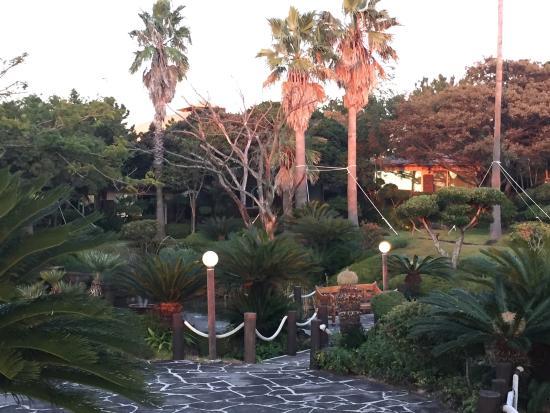 SEAES Hotel & Resort: photo8.jpg