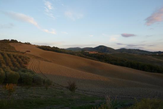 Casa Al Bosco: Toscaans landschap