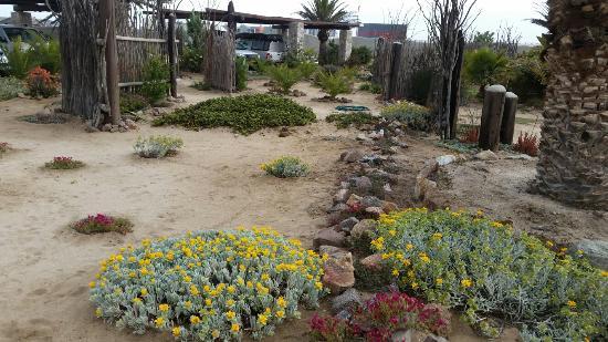 Desert Breeze Lodge Photo