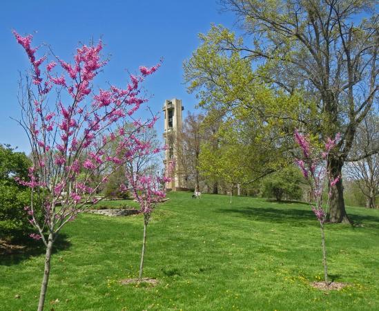 Washington Park Botanical Gardens: Thomas Rees Memorial Carillon