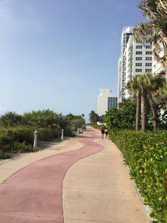 Crystal Beach Suites Oceanfront Hotel Miami Florida Reviews Photos Price Comparison Tripadvisor