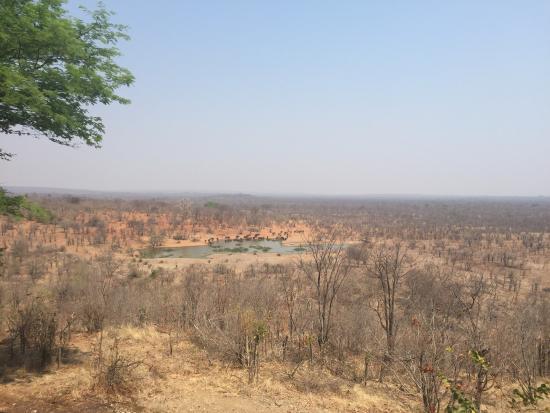 Landscape - Victoria Falls Safari Lodge Photo
