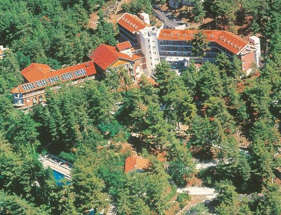 Forest Park Hotel: Overview Picture