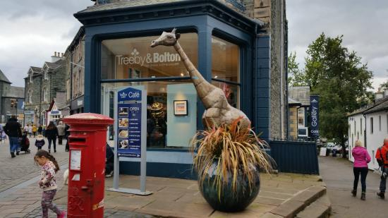 Treeby & Bolton Cafe: Treeby and Bolton Gallery and Shop