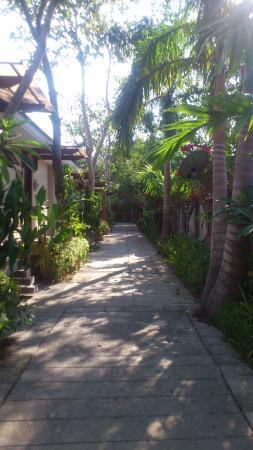 Casitas Pathway
