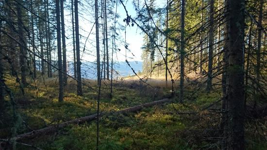 Sondre Land Municipality, Norway: Gamle Ridevegen i Søndre Land