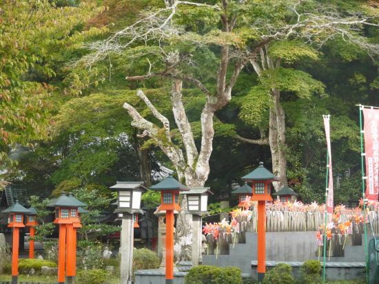 Gyokkei-ji Temple