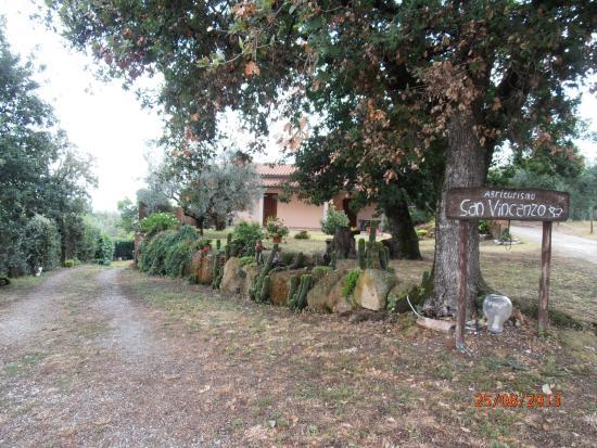 Agriturismo San Vincenzo