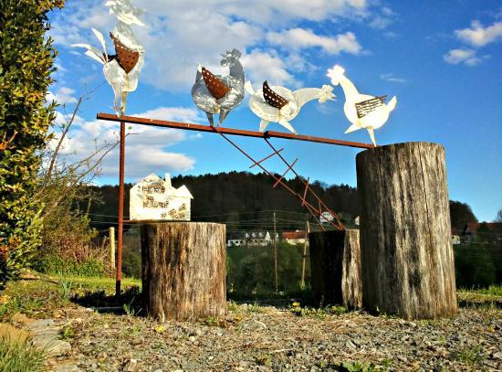 Die verrückten Hühner aus Hatzendorf