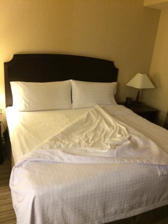 Homewood Suites by Hilton Burlington: photo0.jpg
