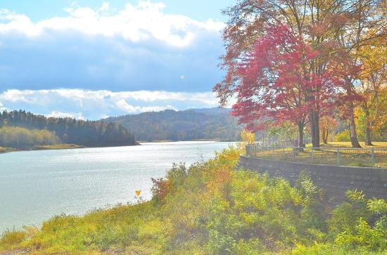 Katsurazawa Lake: 紅葉の時期はとてもきれい