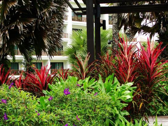 "Naithonburi Beach Resort: ""Вторая"" территория отеля."