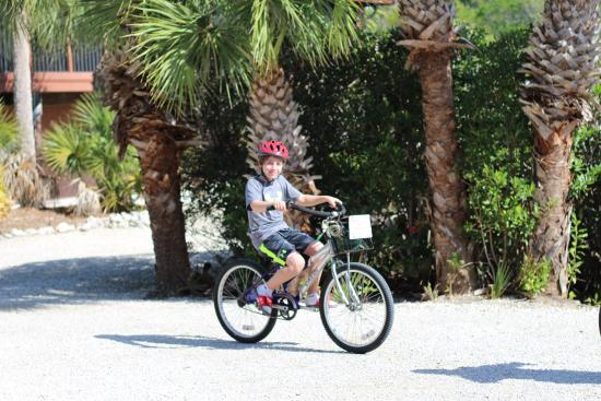 Signal Inn Beach & Raquetball, Inc.: Bikes rented locally & delivered to our condo for the week