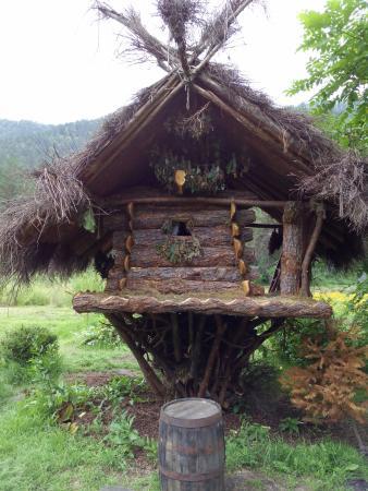 Gorno-Altaisk Botanical Garden