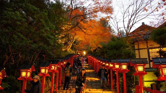 神木 - Foto di Kifune Shrine, Kyoto - TripAdvisor