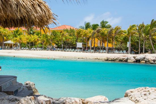 Frente do hotel picture of lions dive beach resort - Lions dive resort curacao ...