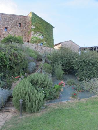 Montalcinello, İtalya: Next to the pool