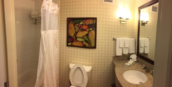 Hilton Garden Inn Houston Energy Corridor: Bathroom panorama