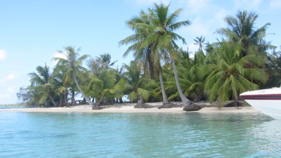 Manihi, Fransız Polinezyası: Motu du pic-nic