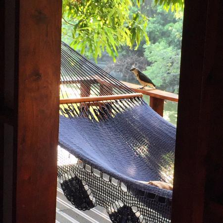 Jicaro Island Lodge Granada Photo