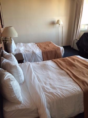Howard Johnson Hotel Downtown Toronto - Yorkville: Duas camas de casal