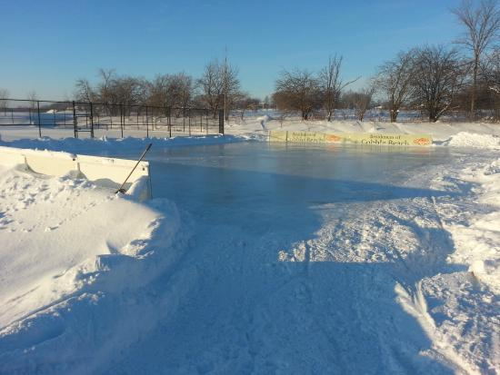 Inn at Cobble Beach Resort and Spa: Winter Ice Rink