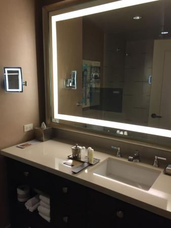 Omni Dallas Hotel Bathroom Mirror With TV Much Admired By American Junkies
