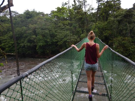 Provincia de Heredia, Costa Rica: Hanging bridge