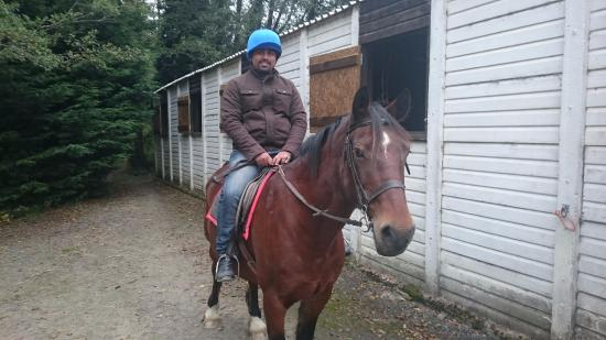 Capel Bangor, UK: Dan the horse, about to take him on his first ever horse ride (rider, not the horse)