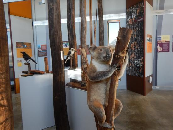 The Pilliga Forest Discovery Centre