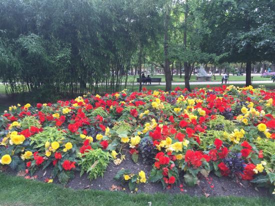 Flores de los jardines de luxemburgo picture of for Jardines de luxemburgo paris